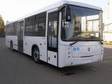 Автобусы КамАЗ